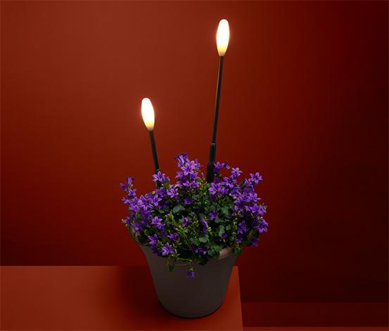 Světelné zápichy s LED, 2 ks