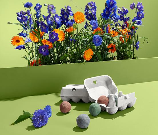 Koule s osivem lučních květin, 12 ks