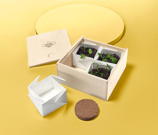 Box na pěstování pro děti