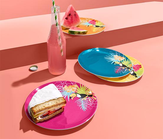Piknikové talíře, 4 ks