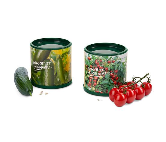Sada na pěstování miniokurek a balkonových rajčat